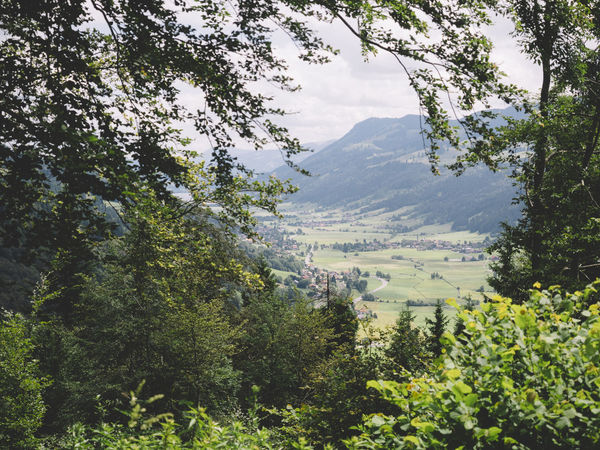 Ausblick vom Staufen ins Tal Beauty In Nature Day Forest Growth Landscape Mountain Mountain Range Nature No People Outdoors Scenics Sky Tranquility Tree