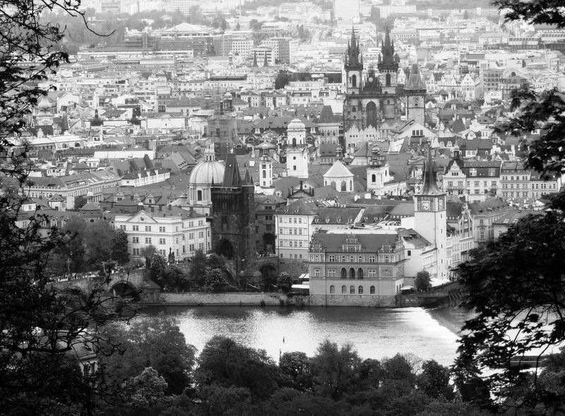 View of the town, Old Town, Prague Architecture Building Building Exterior Built Structure Canal Capital Cities  City Cityscape Elevated View Moldau No People Old Town Outdoors Prague Residential Building Residential District Residential Structure River Town Travel Destinations Tree View Of The Town Vltava River Water