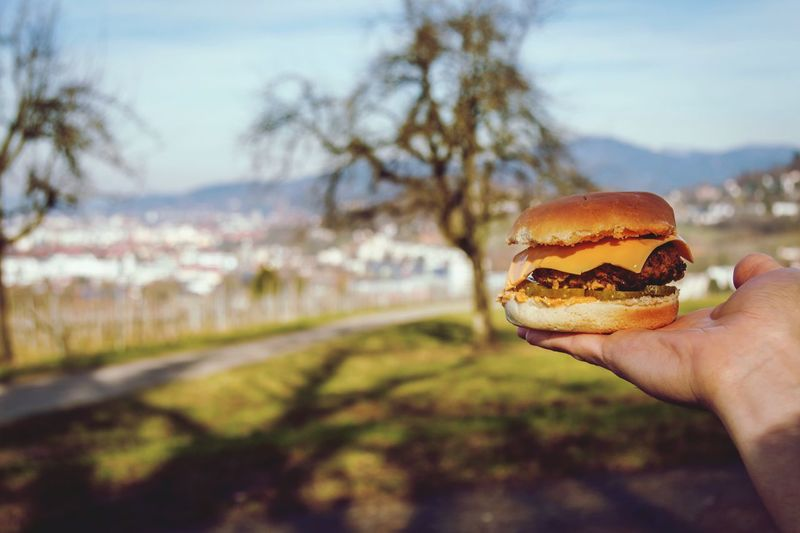 Close-up of hand holding burger against blurred landscape