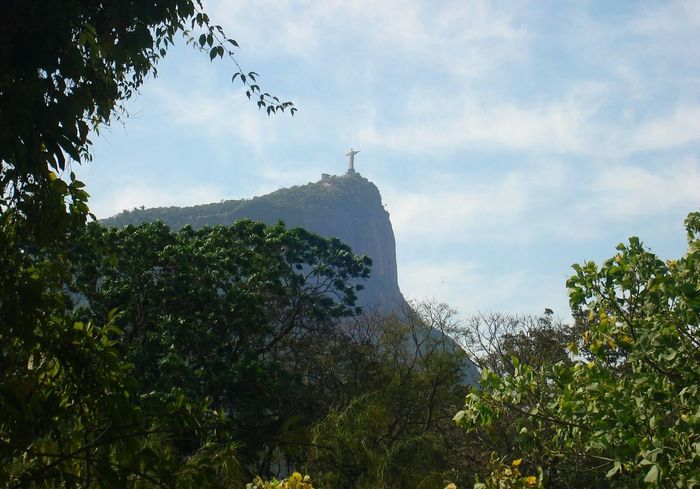 Tree Outdoors Cloud - Sky No People Nature Forest Sky Mountain Day Tree Area Bird Beauty In Nature Corcovado Jardim Botânico Rj Cristo Redentor Lost In The Landscape