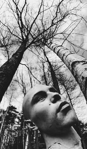 Film Forest Filmphotography Bw_collection Blackandwhite Film Photography Bird Headshot Tree One Person Real People Portrait Lifestyles Leisure Activity Plant Day Nature Looking Branch Bare Tree Child Young Adult Human Face Looking Away Outdoors Females Teenager