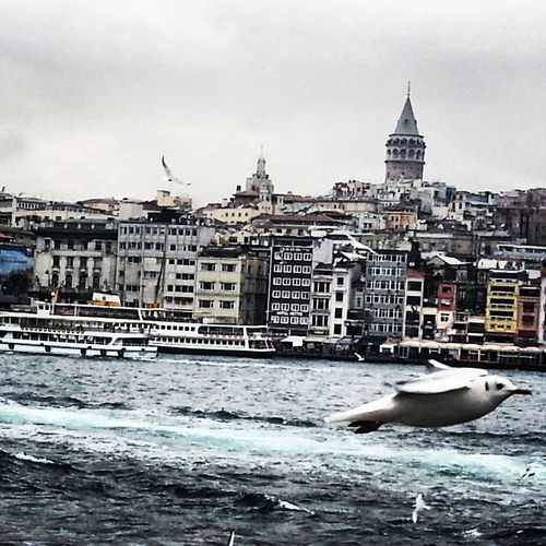 Istanbullovers Galatatower Istanbul Photography