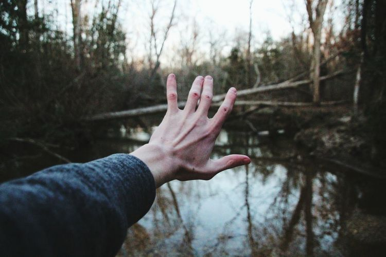 Human hand against trees
