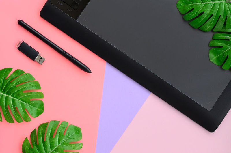 High angle view of leaves with graphics tablet and usb stick on table