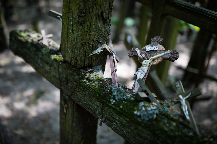 High Angle View Of Crucifix On Wooden Cross At Cemetery
