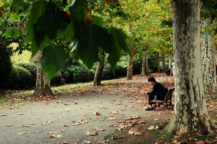 everyone needs some me time Candid Thoughts Reading Tree Parks Tokyo Japan Fall Fall Beauty Fall Colors Thinking About Life Thinking Tree Men