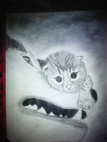 Drawing Cat♡ Dog❤
