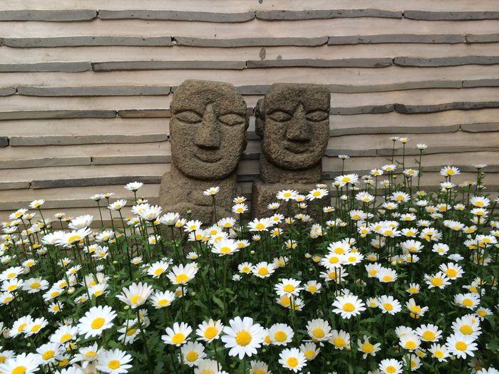 Korea Tradition Flower Flowers 한국 전통 꽃 한국전통