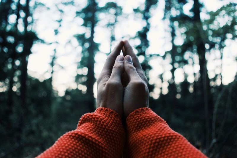 Cropped Image of Woman With Hands Clasped In Forest