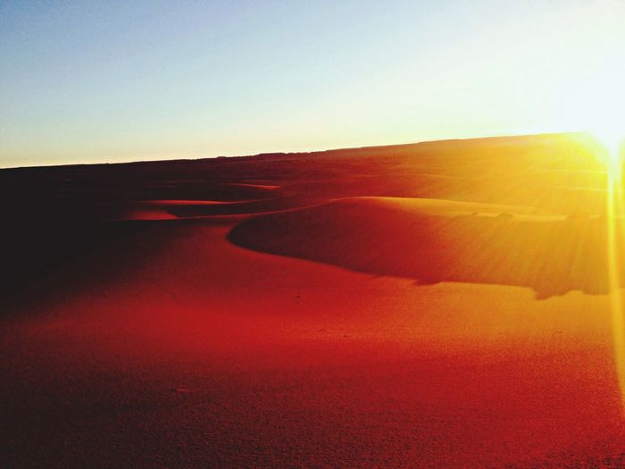 Desert Traveling Hello World Sun