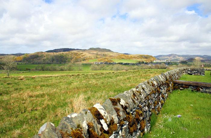 Learn & Shoot: Leading Lines Moss & Lichen Scotland Stone