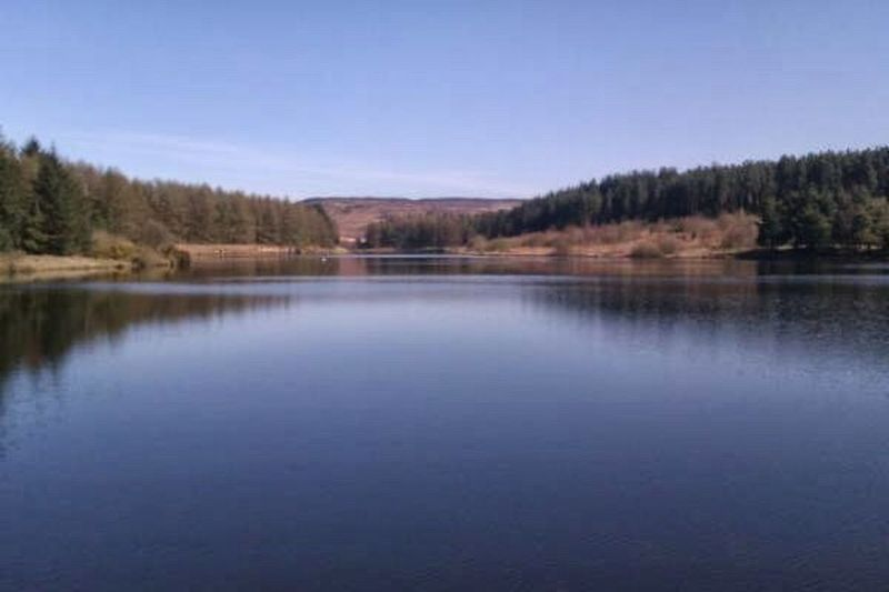 Cod beck reservoir, Osmotherley Nature Reflection Tree Beauty In Nature Water Forest Scenics No People Clear Sky Lake Outdoors Wilderness Landscape Horizontal Day
