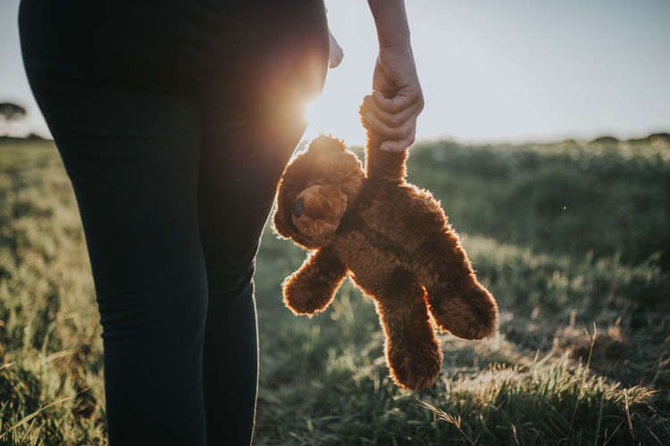 Baby Loneliness MommysGirl Mother Mother & Daughter Mother And Son Toys Bear Toy Body Part Field Human Hand Lens Flare Looking Mommy Mommylife One Person Pet Owner Searching Sunlight Toy This Is Family A New Beginning Moms & Dads