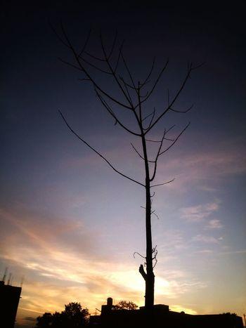 Outdoors Scenics Dramatic Sky Sunset