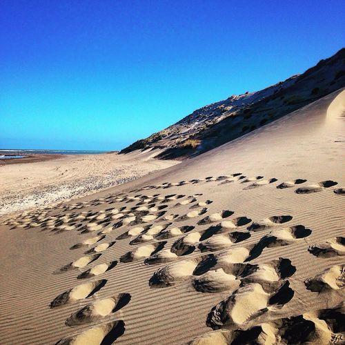 Punta Delgada Argentina Finding New Frontiers