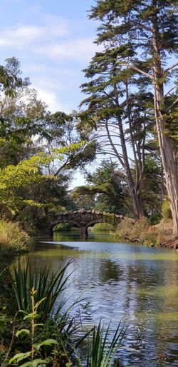 Bridge at Stowe Lake Trees Day Sunny Blue Sky And Clouds Water Greenery Branches Plants Bridge - Man Made Structure Nature_collection No Filter Purist No Edit No Filter Pathway Nature Tranquility Ripples In The Water Rock Lush - Description