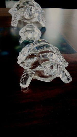 Glass turtles Glass Turtle Glass Turtles Turtle Animals Home Decoration  Home Decor