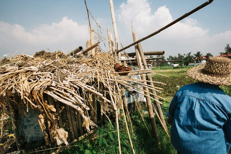 Rear View Of Person Standing By Hut On Farm