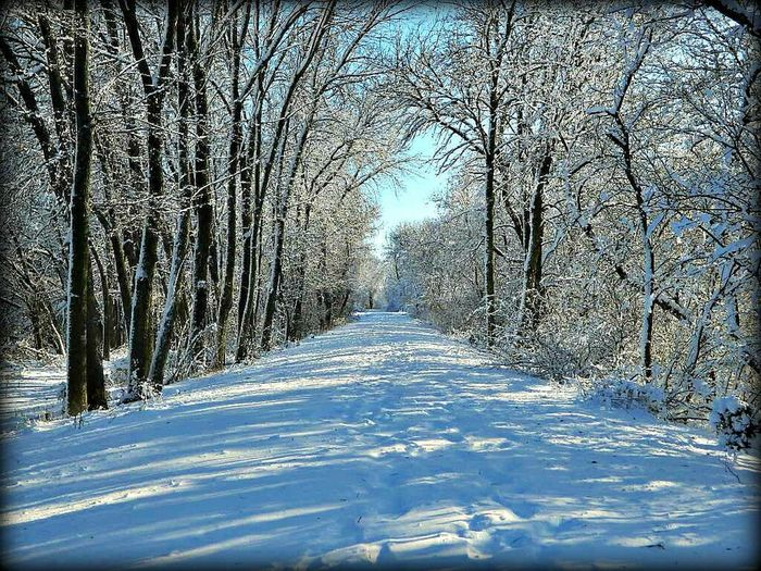 Nature Springfield, Nebraska Winter Wintertime Winterscapes My Best Photo 2015 My Winter Favorites Its Cold Outside Mopac Trail Landscapes With WhiteWall Blue Wave Original Experiences Feel The Journey Colour Of Life