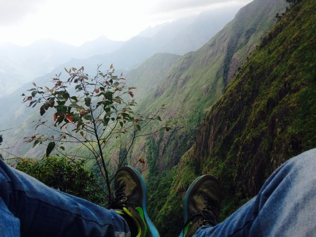Mountain Mountain Range Plant Flower Personal Perspective Nature Tranquility Beauty In Nature Day Scenics Outdoors Cliff Valley Aerial View Malayali Malayalee Wanderlust Wanderingalien Travel Explore The World