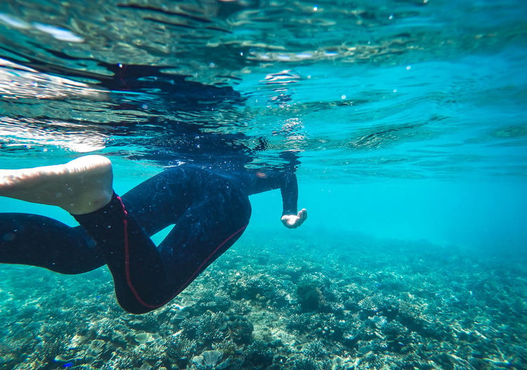 Under the sea Underwater blue dive Island Adventure Aquatic Sport Exploration Eyewear Holiday Leisure Activity Lifestyles Men Nature One Person Outdoors Real People Sea Snorkeling Sport Swimming Trip UnderSea Underwater Underwater Diving Vacations Water