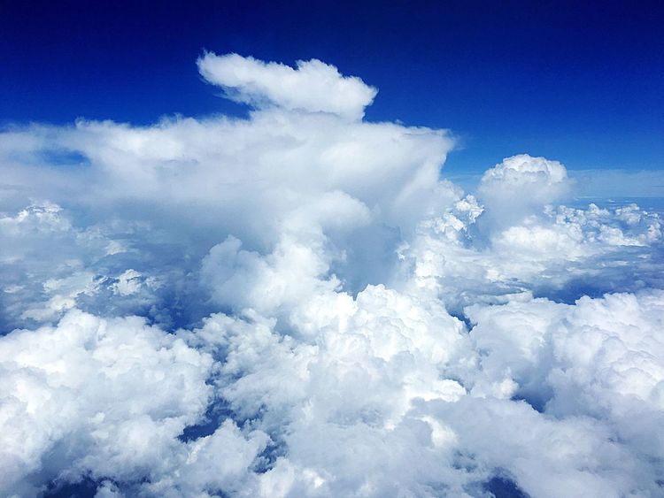 Cloud - Sky Sky Blue Nature Cloudscape White Color Fluffy Softness Cumulus Cloud Heaven Beauty In Nature Backgrounds Dramatic Sky Tranquility Scenics Sky Only No People Outdoors Day