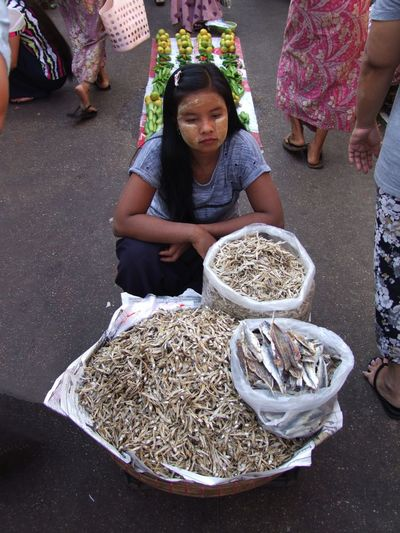 Bored Girl selling Dried Fish in the Indian Quarter Basket Bored Girl Bored Waiting Composition Dried Fish  Food Full Frame Girl Girl Portrait High Angle View Indian Quarter Ingredient Making A Living Market Market Stall Myanmar Outdoor Photography Selling Small Business Street Market Travel Destination Woman Portrait Working Yangon Young Woman