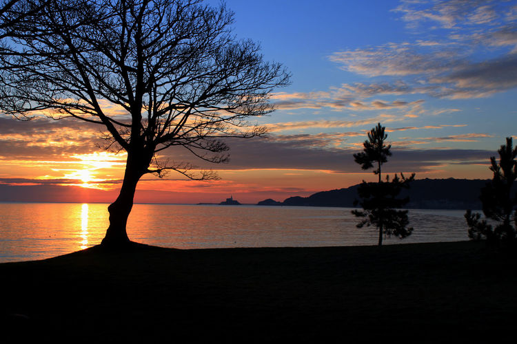 Sunrise over Swansea Bay to Mumbles head Beauty In Nature Cloud - Sky Landscape Mumbles No People Orange Color Sea And Sky Silhouette Sunrise Sunrise_sunsets_aroundworld Swansea Bay Tranquil Scene Tree Water The Great Outdoors - 2018 EyeEm Awards