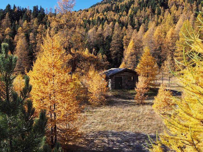 Graubünden,