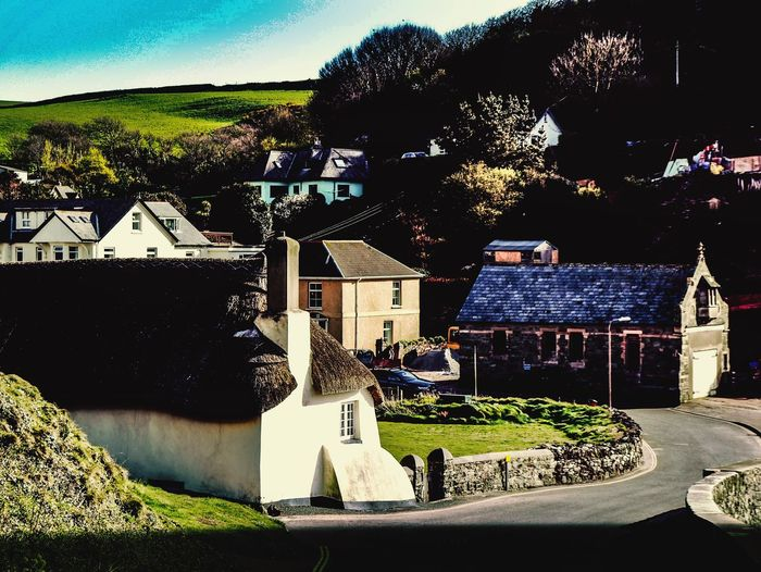 Quaint thatched cottage in Hope Cove. Architecture Tree Built Structure Building Exterior Village Village Life Village Photography Devon EyeEmNewHere Thatched Cottage Thatched Roof Outdoors Roof Day No People Sky Place Of Heart
