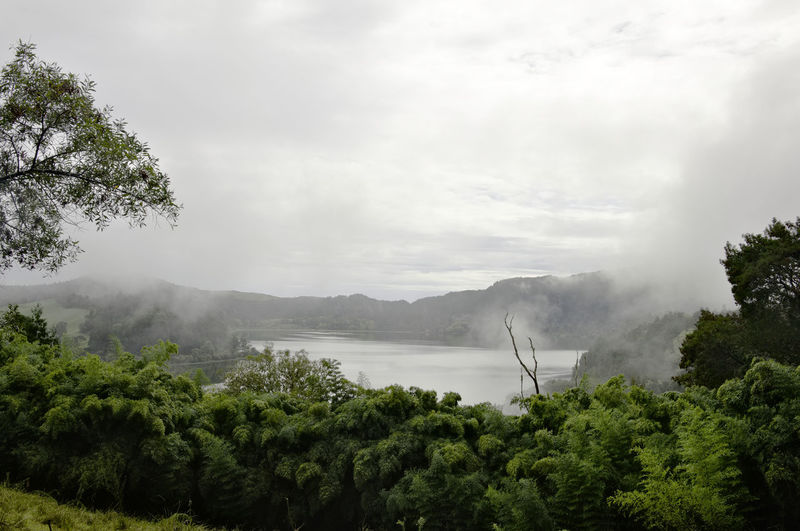 Outdoors No People Nature Scenics - Nature Sky Water Beauty In Nature Plant Portugal Foggy Fog Açores - São Miguel Açores Volcano Lake Lagoa Das Furmas Furnas Landscape