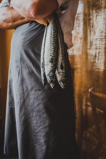 Midsection of chef holding mackerels