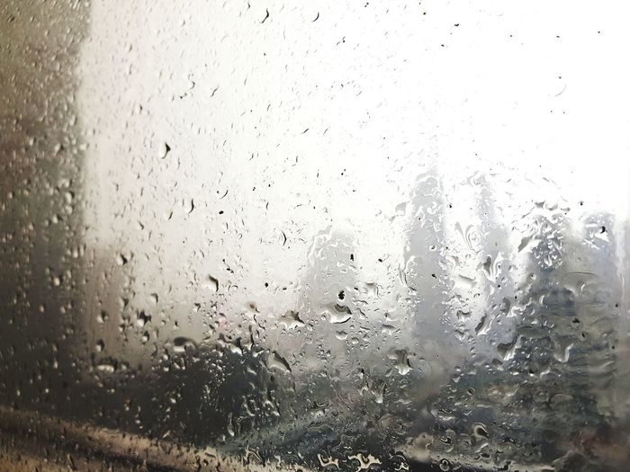 Window Rian