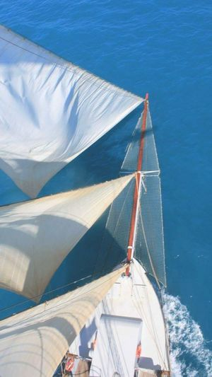 My Year My View Climbing to the fore mast yards to admire the view on the Tall Ship Wylde Swan Tall Ship Wylde Swan Water Outdoors Sea Northsea Sails No People Finding New Frontiers
