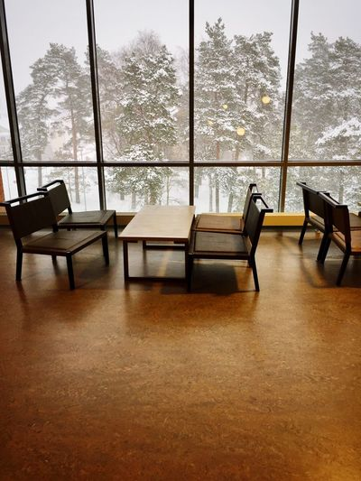 Majestic Contrast Chair Window Indoors  Table Empty No People Tree Board Room Day Black And White Black & White