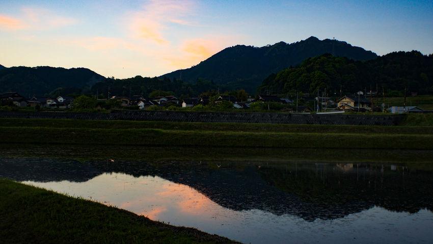 Reflection Farm Landscape Rice Paddy Sunset Nex5 Takumar 28mm F3.5 Day