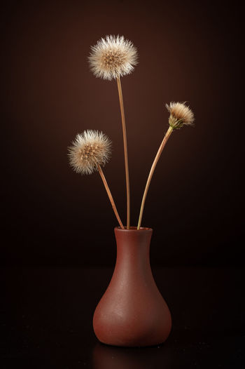 vase from the