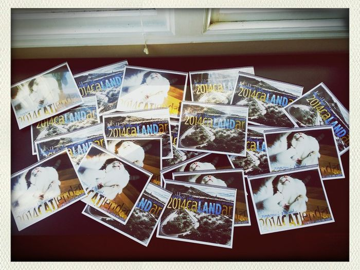 Now on sale at: www.awalshphotography.bigcartel.com/category/calendars Cats Calendars On Sale Landscape Photography