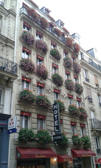 As January floridas de Paris!!! Flores Flowers Windows Windows With Flowers Hello World France Enjoying The Sights Flowerlovers