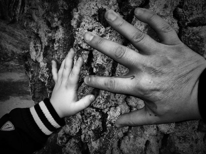 Son with father with hands on bark