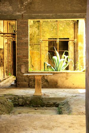 Italy Italian Lifestyle Italianeography Italianstyle Pompéi Streetphotography The Street Photographer - 2016 EyeEm Awards Summer Summercolors Brown And Yellow Soft ArtOfLiving Old Buildings Old Agave Plant Window View The Essence Of Summer