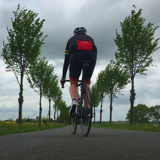 Cycling Roadbike