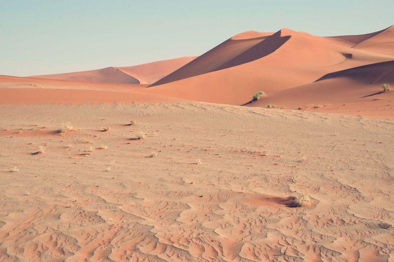 EyeEm Selects Desert Sand Dune Sand Landscape Land Scenics - Nature Arid Climate Tranquility Beauty In Nature Sunlight