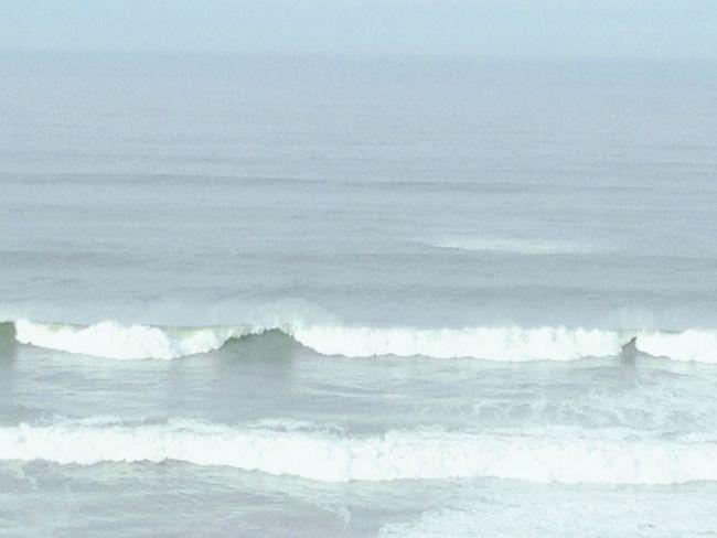 Surf Surfing