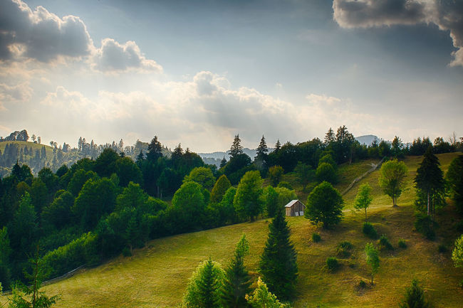 Hills Agriculture Beauty In Nature Cloud Cloud - Sky Farm Field Grass Green Color Growth Idyllic Landscape Nature Plant Rural Scene Scenics Sky Sunlight Tranquil Scene Tranquility Tree