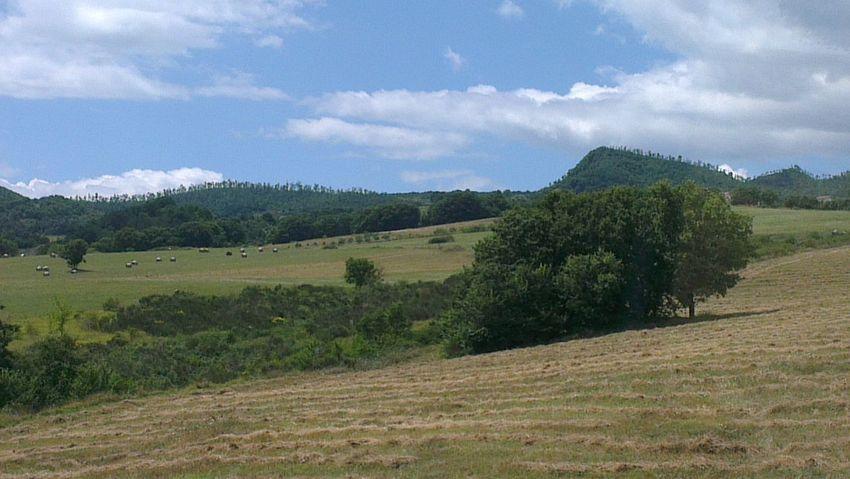 ragazzi, l'Italia è bella! strada del Trigno Landscape Mountain View On The Road Foto By Ulk