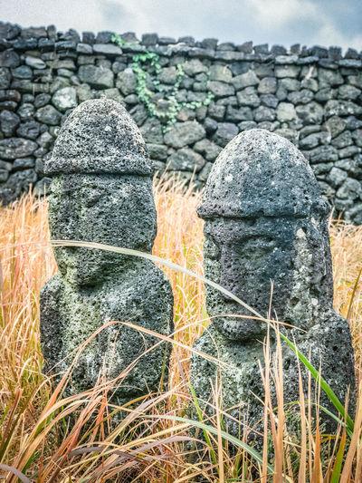 "Twin Jeju idols (Dolharubang, the ""grandfather stones"" ) in Seongeup Folk Village, Jeju Island, Korea Dolharubang Grandfather And Grandson Jeju Island, Korea Seongeup Seongeup Folk Village Folk Village Grandfather Rock Grandfather Stone Idols"