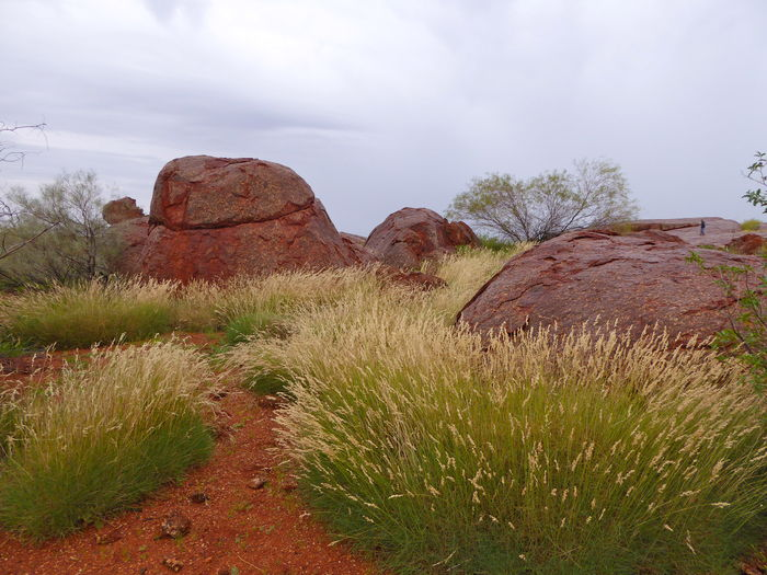 Beauty In Nature Central Australia Day Grass Landscape Nature No People Outdoors Red Earth Rocks And Boulders Scenics Sky The Great Outdoors - 2017 EyeEm Awards Tranquil Scene Tranquility Travel Destinations
