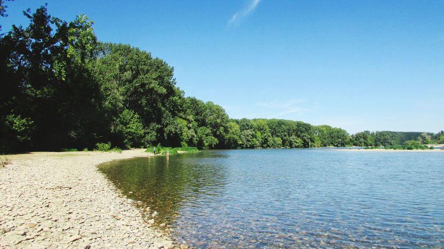 La Garonne France Lot Et Garonne Marmande Fleuve Tree Water Blue Sky Calm Tranquility