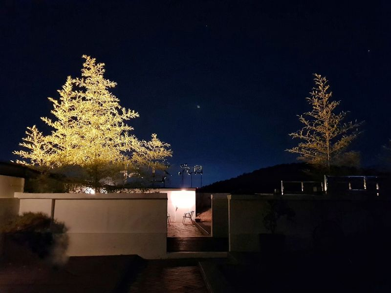 on the roof Korea Photos Treepark Tree Tree Photography Nature Color Portrait Freshness Fresh Night Lights Nightlife Night View TreePorn Silhouette Night Christmas Christmas Decoration Celebration Illuminated Tree Sky Outdoors